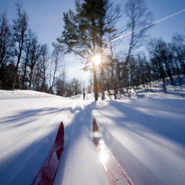 ski into sun