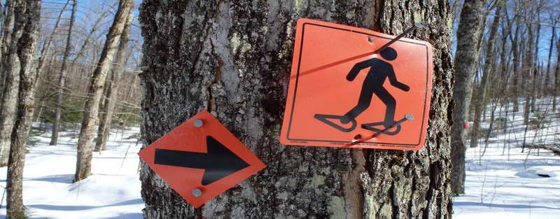 Snowshoe sign arrow