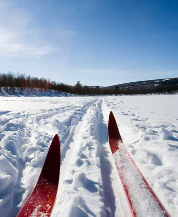 nordic skis in track
